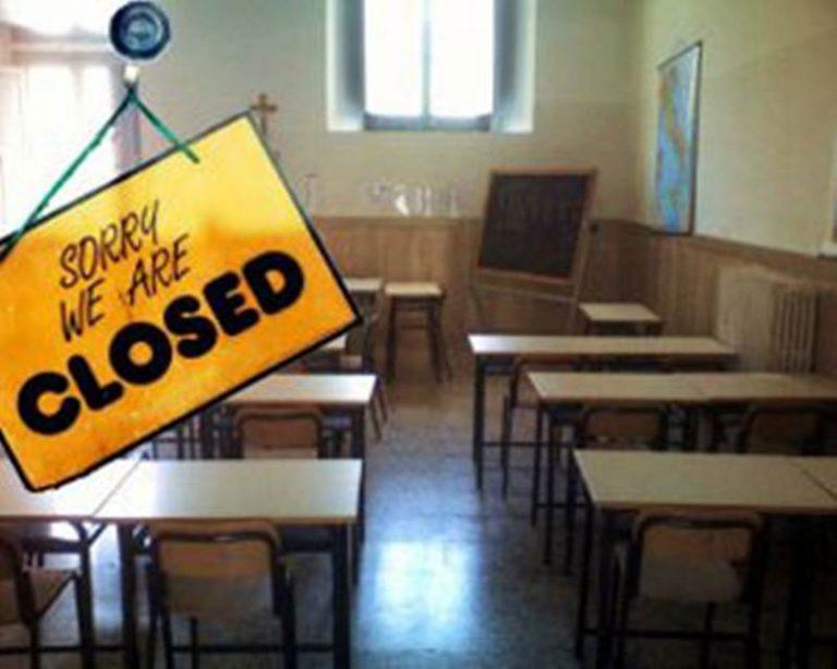 Scuola invasa dai topi, lezioni sospese a San Calogero