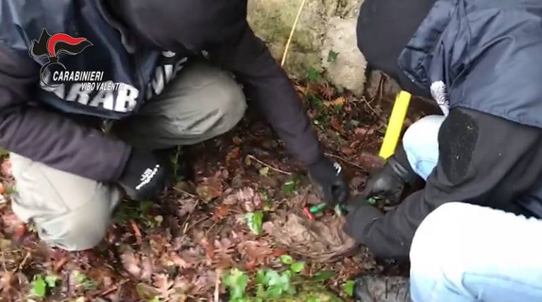 Munizioni occultate in acquedotto: sequestri a Filandari (VIDEO)