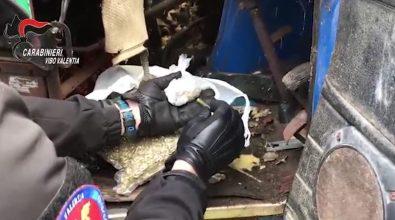 Droga e munizioni a Filandari, arrestato 27enne (VIDEO)