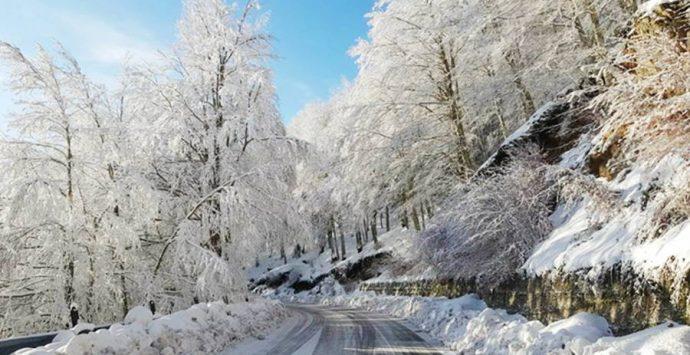 La neve cade abbondante sulle Serre vibonesi, il paesaggio è da fiaba (VIDEO)