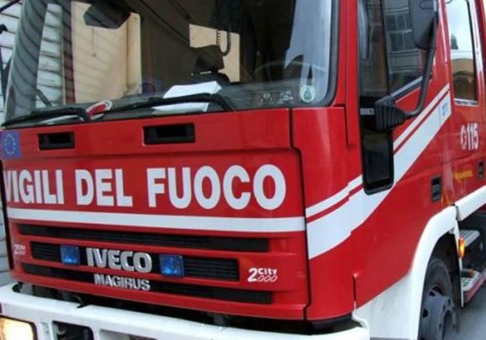 Serpente spunta dal water, intervento dei vigili del fuoco a Serra San Bruno