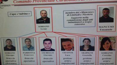 Operazione Nemea, ancora una scarcerazione: torna libero Luca Ciconte