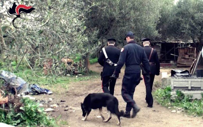 'Ndrangheta: operazione nel Vibonese, provvedimento di fermo contro i Soriano (NOMI e VIDEO)