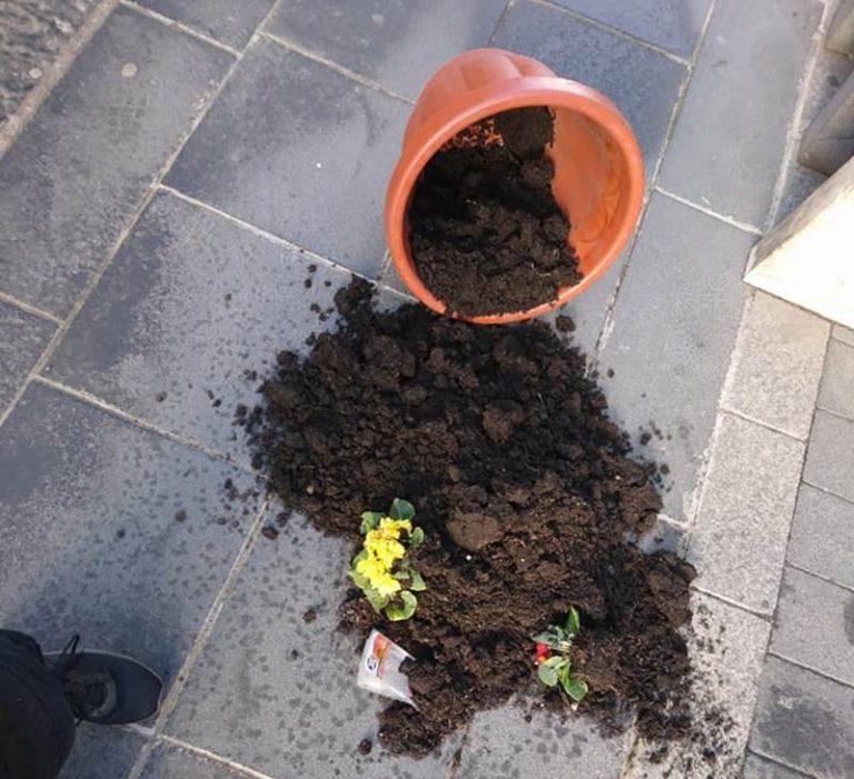 Vandali in azione a Vibo, vasi con i fiori rovesciati sul Corso