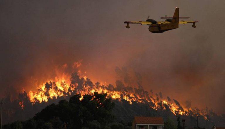 «Territorio impreparato a fronteggiare gli incendi», l'allarme della Flai-Cgil di Vibo