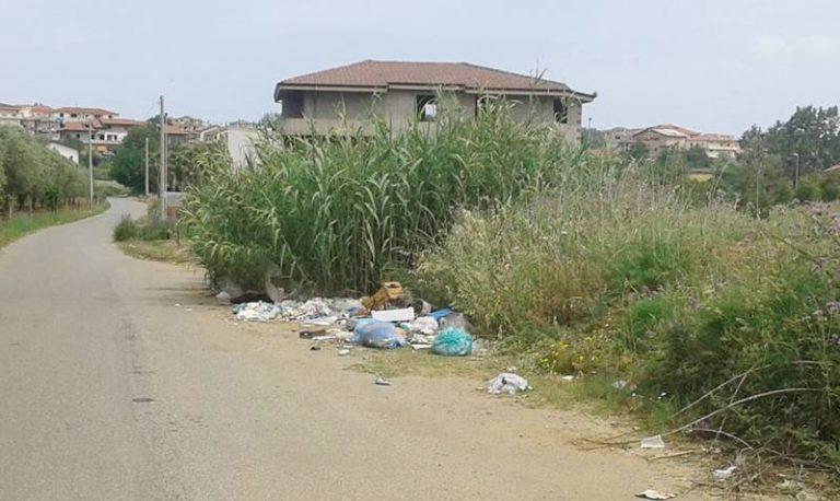 Rifiuti abbandonati a Ionadi, Amministrazione e cittadini insieme per ripulire le strade
