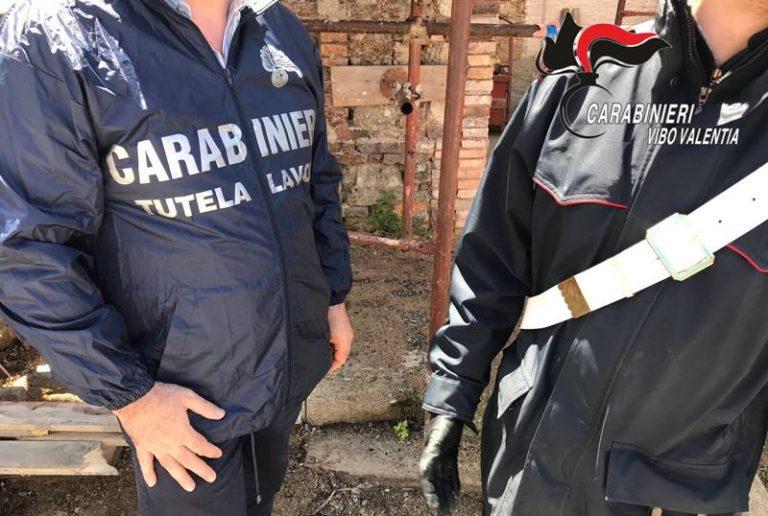 Lavoratore in nero a Ricadi in ditta produzione della cipolla rossa
