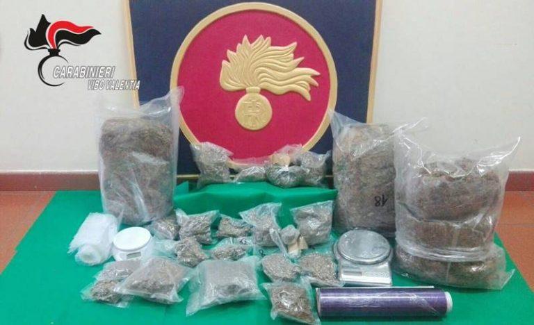 Sei chili di marijuana nel garage, assolto 39enne di Soriano