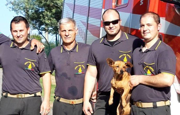 Il cane Peppino con i suoi soccorritori