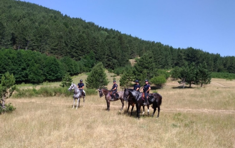 Controllo del territorio, a Serra San Bruno arrivano i carabinieri a cavallo (VIDEO)