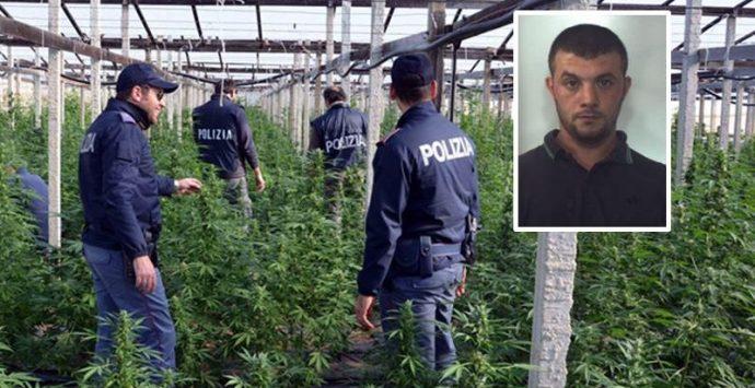 """Narcotraffico: """"Giardini segreti"""", chieste dieci condanne"""