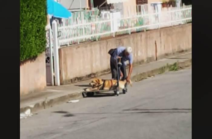 Ogni giorno porta il cane malato a spasso su un carrello, la sua storia commuove il web (VIDEO)