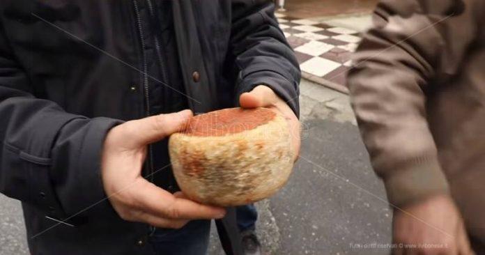 Il lancio del formaggio, uno dei giochi di Dasà