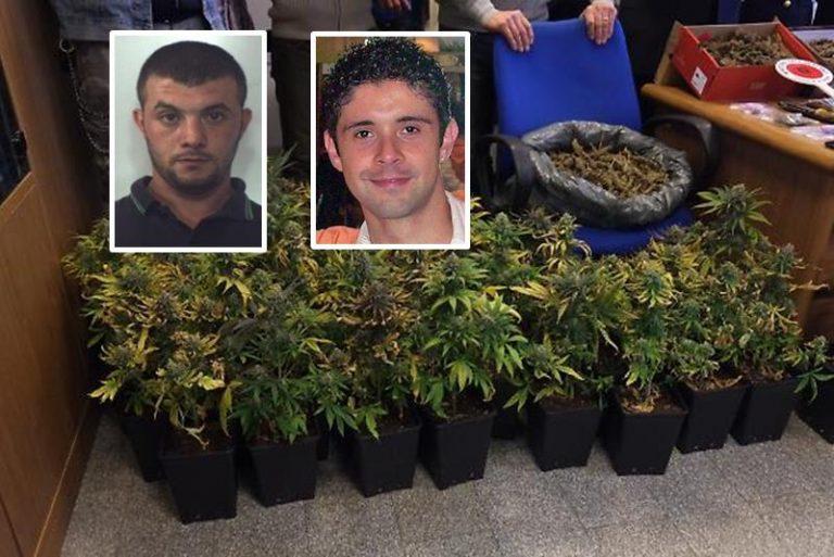 """Narcotraffico: l'inchiesta """"Giardini segreti"""" si divide, atti pure a Vibo"""