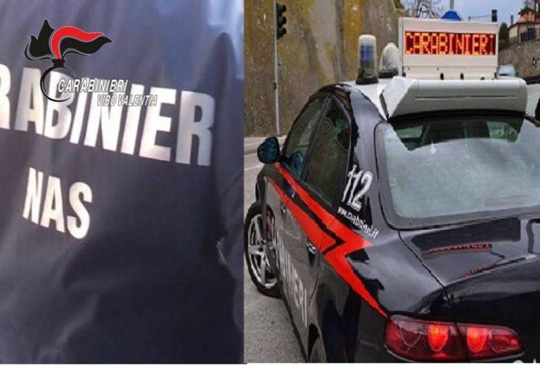 Controlli del Nas nei locali di Serra San Bruno, sanzioni per 22mila euro