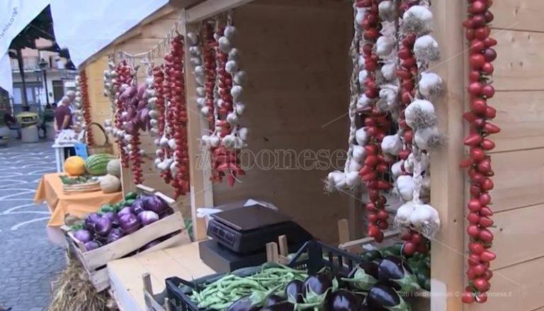 Gli antichi sapori di scena al Mediterranean food & art festival di Stefanaconi (VIDEO)