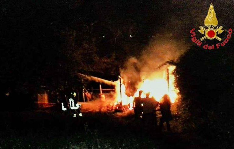 Fienile in fiamme a Cessaniti, l'intervento dei vigili del fuoco salva una stalla