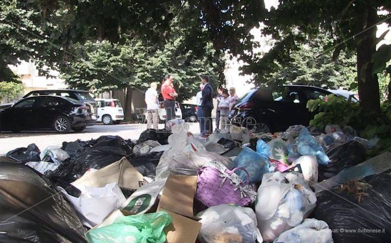 Rifiuti, a Vibo è ancora caos: città in piena emergenza ambientale (VIDEO)