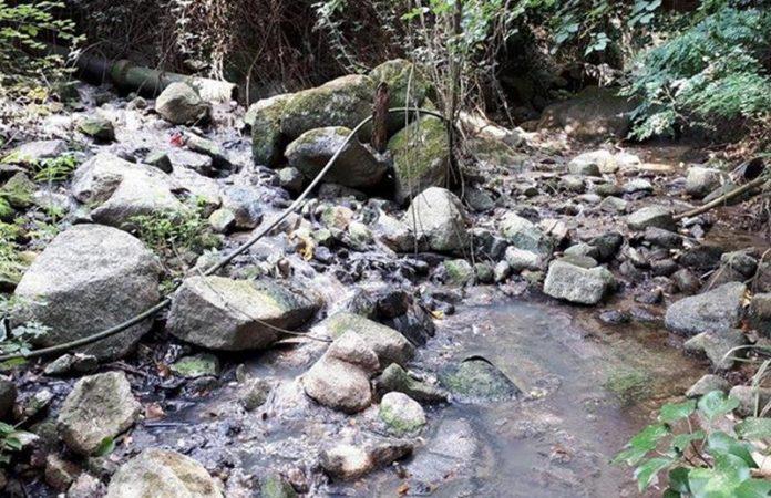 Lo sversamento di liquami a Coccorinello