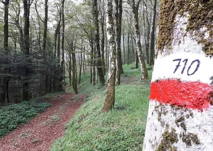 """Trekking, boom di iscrizioni per il """"Kalabria coast to coast"""""""
