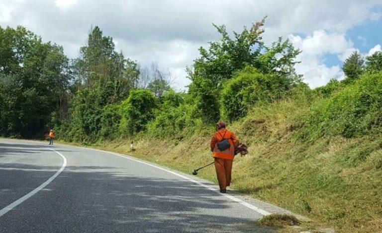 Sfalci abbandonati sulla Provinciale 17, la denuncia del MeetUp Vibonesi in movimento