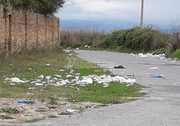 Rifiuti e degrado nell'area del cimitero di Vibo Valentia – Foto