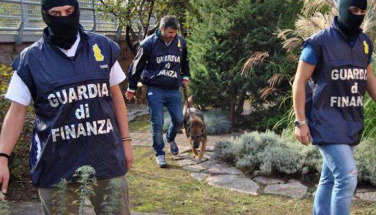 Narcotraffico internazionale dal Vibonese, nuovi arresti della Finanza