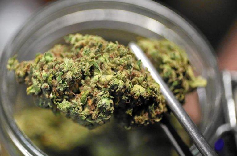 Marijuana in camera da letto, un'assoluzione a Vibo