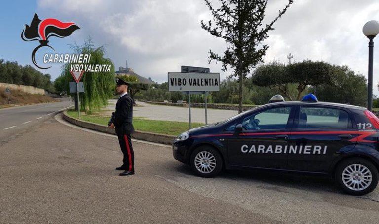 Controlli dei carabinieri nel Vibonese, sequestri e denunce