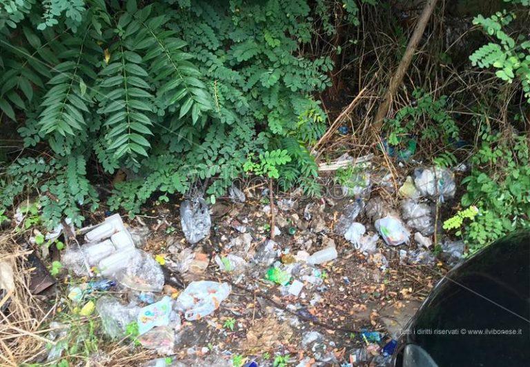 Via Forgiari a Vibo invasa da rifiuti e erbacce, lo sdegno dei commercianti – Foto