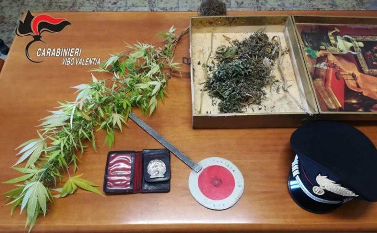 Distintivo dei carabinieri e marijuana sequestrati nel Vibonese