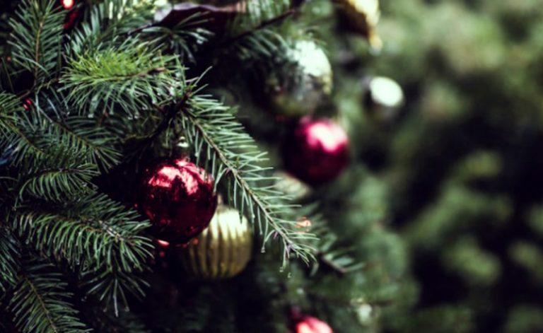 Natale in poesia, a Pannaconi tutta la forza comunicativa dei versi