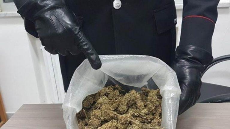 Marijuana nello zaino, un arresto nelle Serre