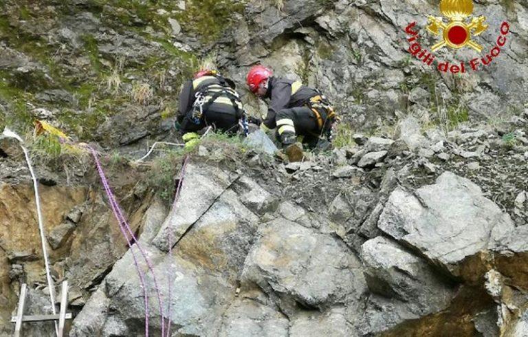 Pastore tedesco salvato dai vigili del fuoco nel Vibonese