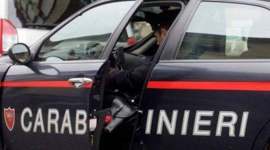 Ricettazione, rapine e furti nel Vibonese, a Cosenza e Catanzaro: 19 arresti – Video