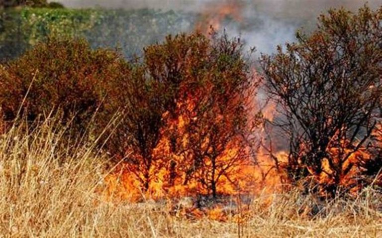 Incendio del costone fra Coccorino e Joppolo, assolto l'imputato
