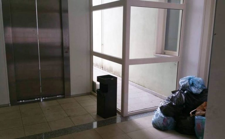 Topi al Centro per l'impiego di Vibo, uffici regolarmente al lavoro