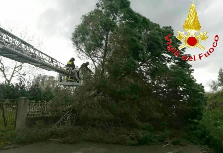 Ondata di maltempo nel Vibonese, vigili del fuoco impegnati in oltre 30 interventi
