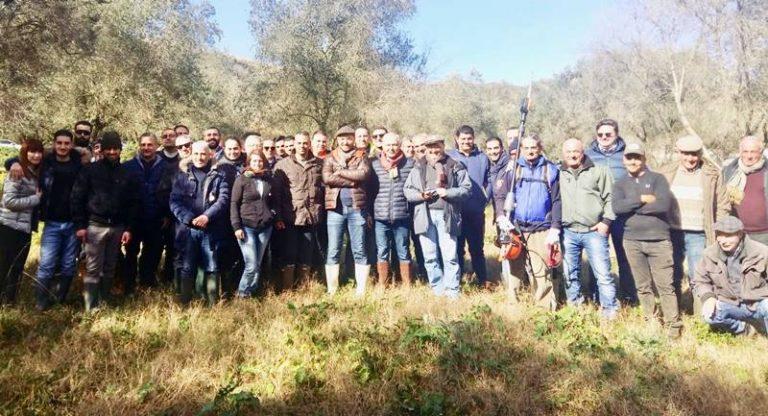 A Stefanaconi il corso teorico-pratico di potatura dell'olivo dell'Arsac