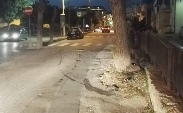 Auto contro un albero a Tropea, ferito un 29enne di Parghelia