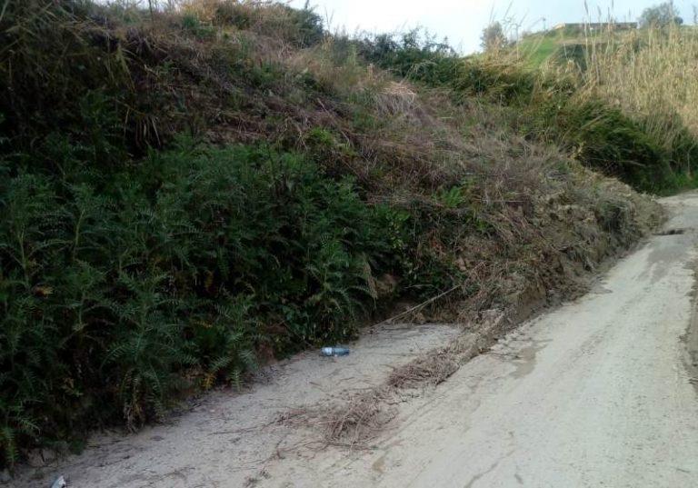 Strade invase da vegetazione, la Provincia corre ai ripari: stipulate due convenzioni