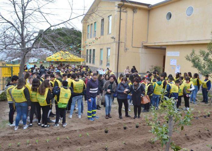 L'orto realizzato nel cortile della scuola