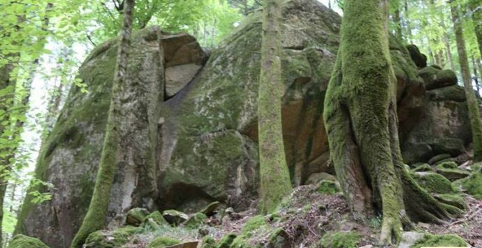 Il Parco delle Serre e l'Aigae avviano i corsi per le guide ambientali escursionistiche
