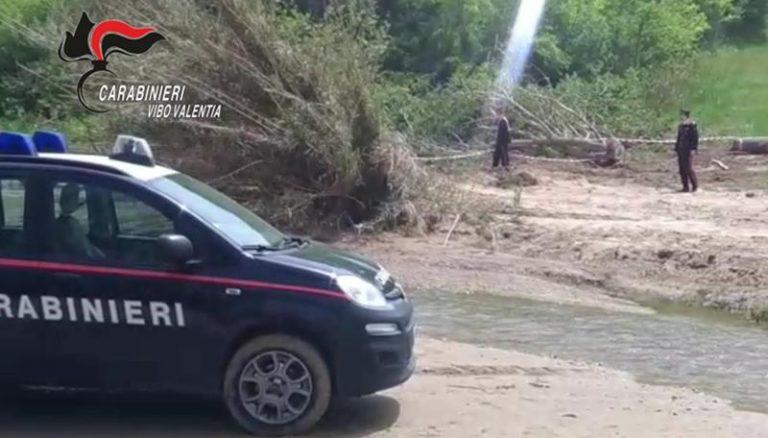 Tagliavano alberi vicino al lago Angitola, scoperti dai carabinieri