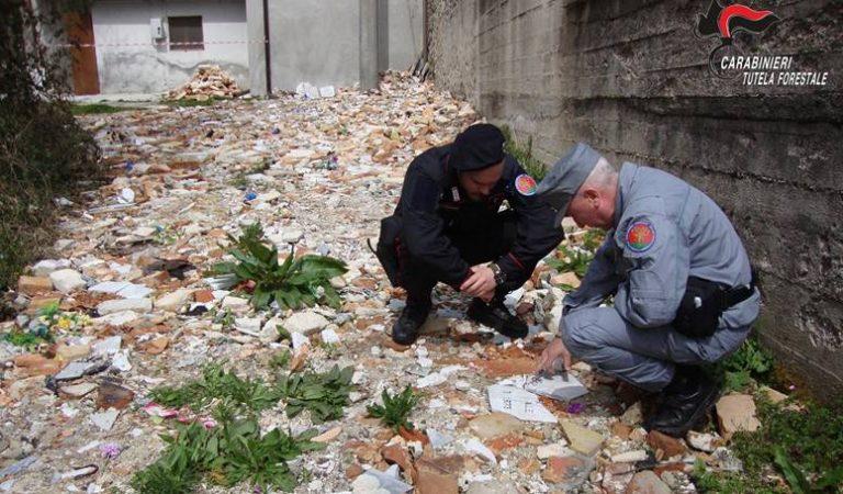 Vestiti e resti umani tra i rifiuti cimiteriali, denunciato priore di Serra San Bruno