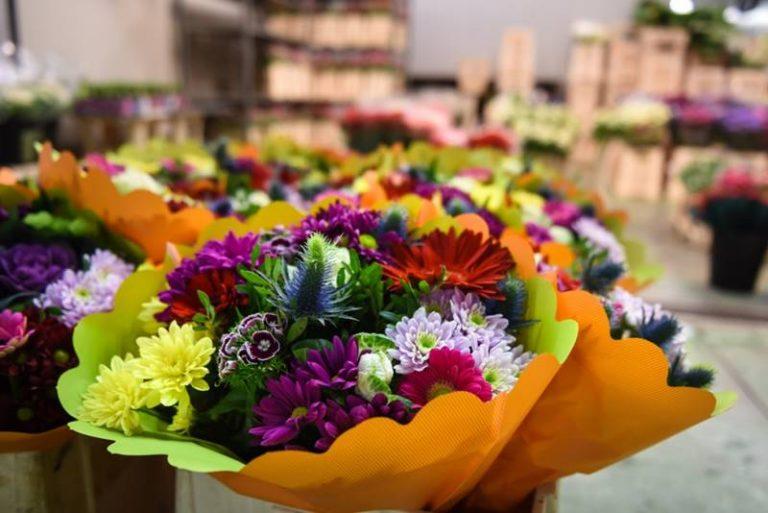 """Vibo, in arrivo la terza edizione della """"Fiera dei fiori"""""""