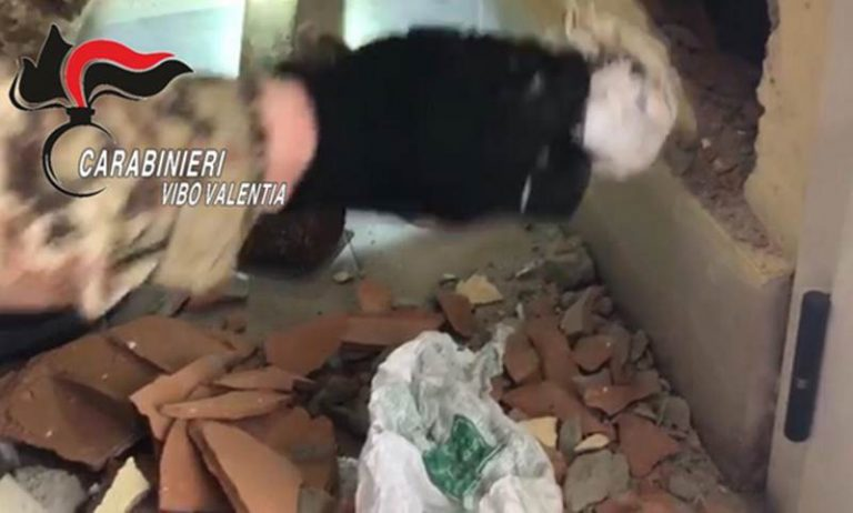 Cocaina e marijuana dentro casa, un arresto a Paravati