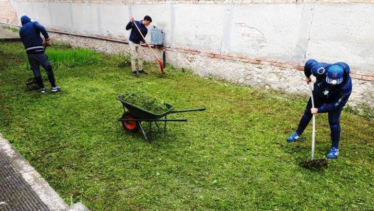 Paravati, i giovani ripuliscono le aree verdi del paese