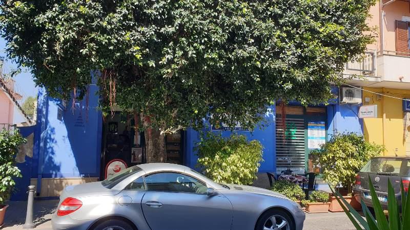 vibo marina potatura alberi 2