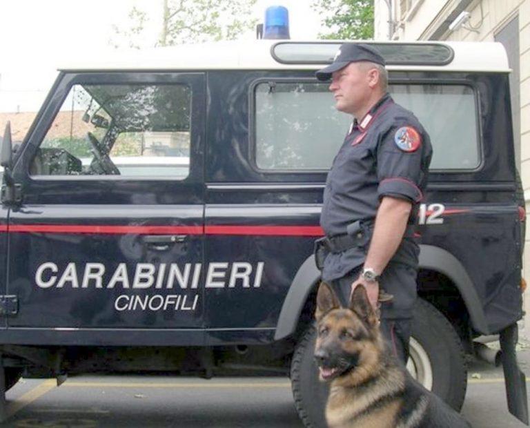 Droga, blitz dei carabinieri in tre regioni: perquisizioni anche a Vibo – Video